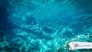 02082015-fun-dive-peristeria-05