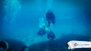 02082015-fun-dive-peristeria-08