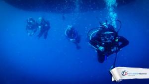 09082015-fun-dive-tuna-02