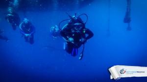 09082015-fun-dive-tuna-03