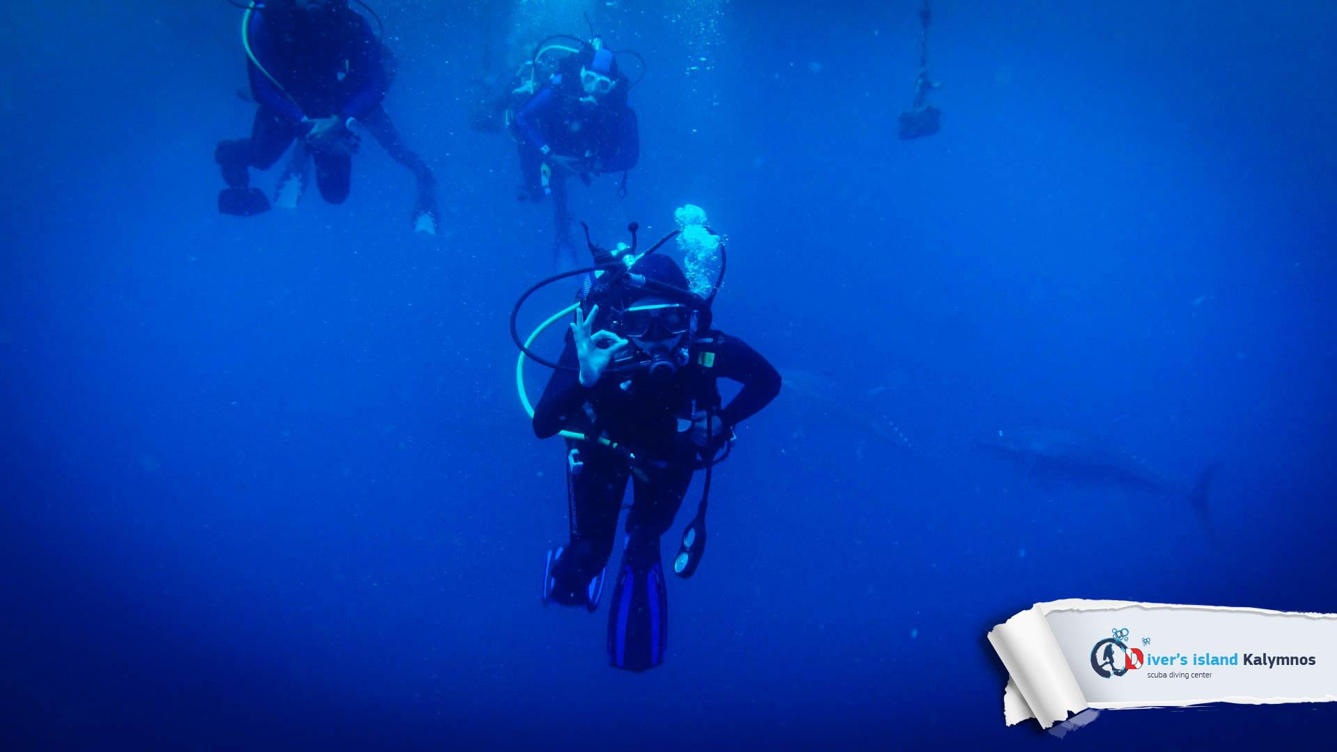 09082015-fun-dive-tuna-05