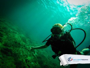 12092015-discover-scuba-diving-05