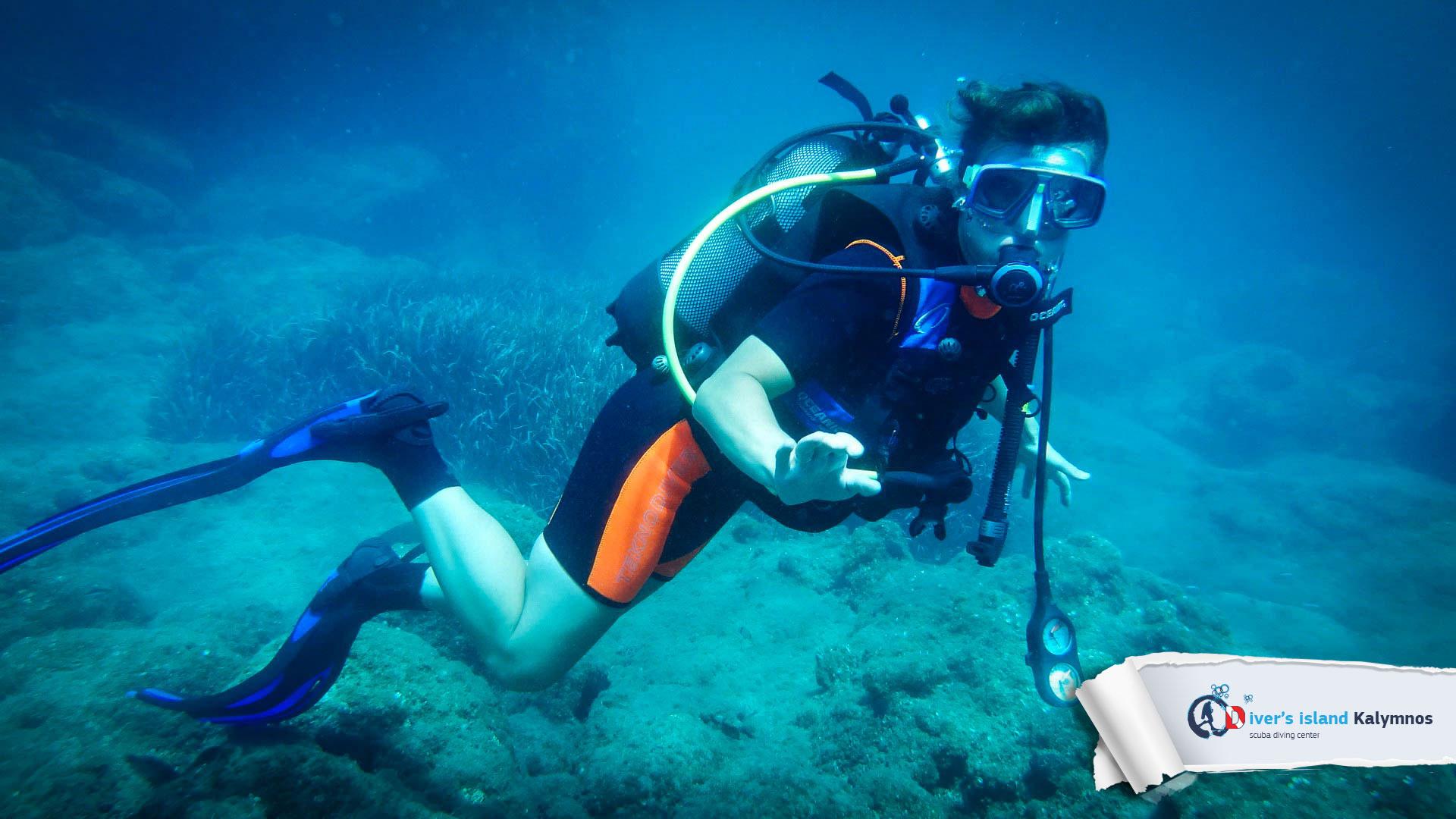 15082015-fun-dive-seal-cave-03