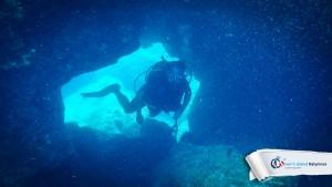 15082015-fun-dive-seal-cave-07