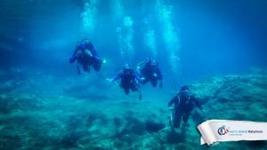 24082015-fun-dive-seal-cave-01