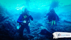 24082015-fun-dive-seal-cave-04