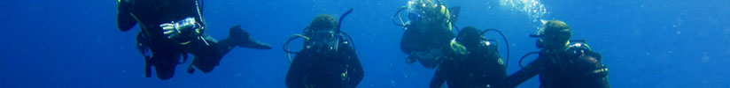 courses-large-divemaster