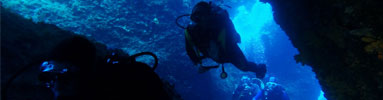 courses-small-deep-diver