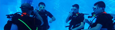 courses-small-open-water-diver