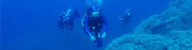 courses-small-scuba-diver